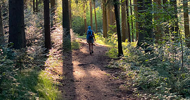 Walk and Talk Bild - ein Angebot von Gedankenwandern